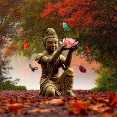 Гунаратана Бханте Хенепола - Четыре основы внимательности. Простое руководство