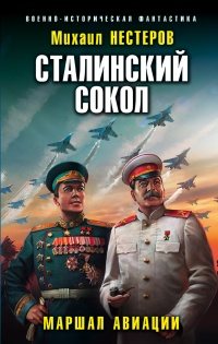 Маршал авиации - Михаил Нестеров