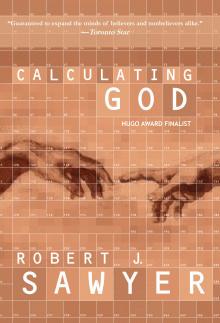 Сойер Роберт - Вычисление Бога