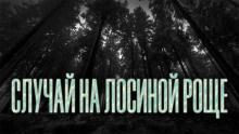 Новгородов Олег - Случай на Лосиной Роще