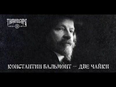 Бальмонт Константин - Две чайки