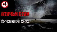 Чёрный Роман - Птичьи стаи