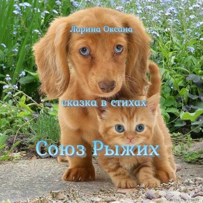 Ларина Оксана - Союз Рыжих