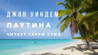 Уиндэм Джон - Паутина