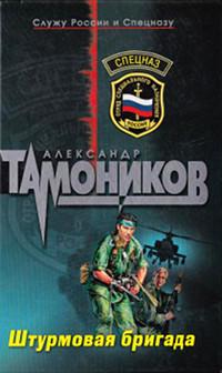 Штурмовая бригада - Александр Тамоников