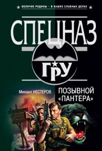 Позывной «Пантера» - Михаил Нестеров