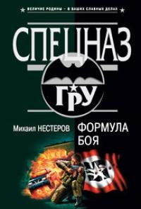 Формула боя - Михаил Нестеров