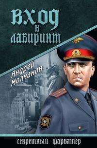 Вход в лабиринт - Андрей Молчанов